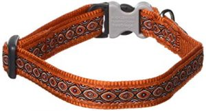 Dog collar with buckle