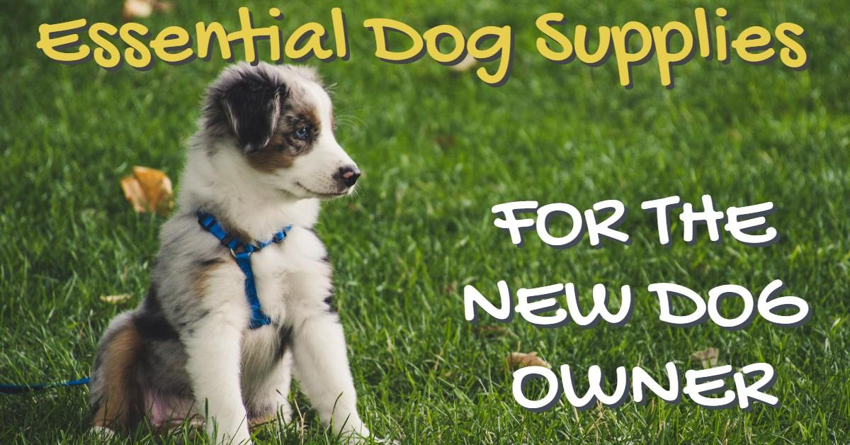 Text stating Essential Dog Supplies for New Dog Owner with puppy on grass