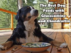 Dog Foods with Glucosamine and Chondroitin