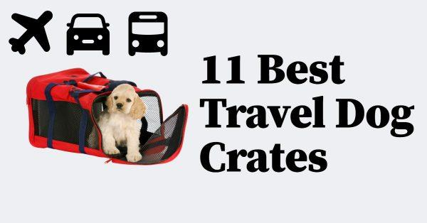 11 Best Travel Dog Crates: Check Out My Top Picks