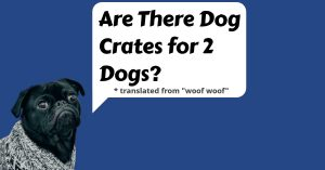 Are There Dog Crates for 2 Dogs?