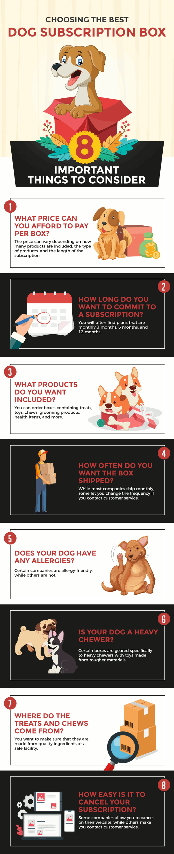 Infographic on choosing the best dog subscription box with 8 important things to consider