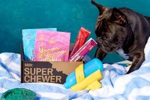 Dog sitting on a towel next to an open BarkBox Super Chewer Box filled with treats