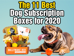 The 11 Best Dog Subscription Boxes for 2020