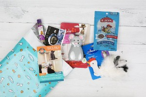 Contents of Pet Treater shown on floor with toys and treats