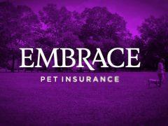 Embrace Pet Insurance – Our Review
