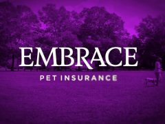 Embrace Pet Insurance – Our Review