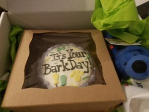 A photo of an It's Your BarkDay cake in a closed box next to a blue plush toy.