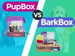 PupBox vs. BarkBox- Which is Better?