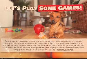PupBox insert with games to play with your dog