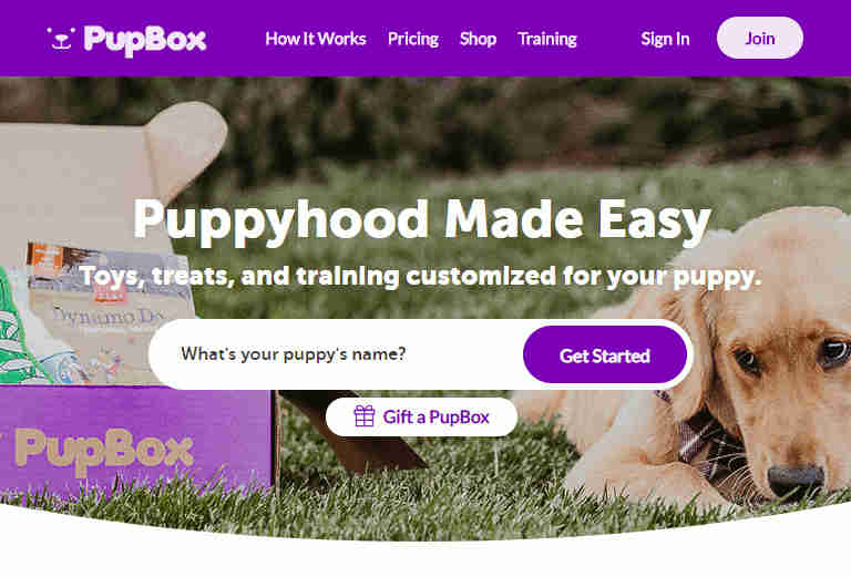 Front page of website for PupBox