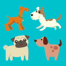 Various dogs with blue background