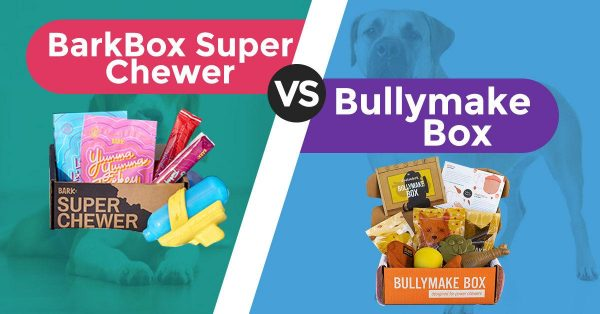 BarkBox Super Chewer vs Bullymake Box- Which Is Better?