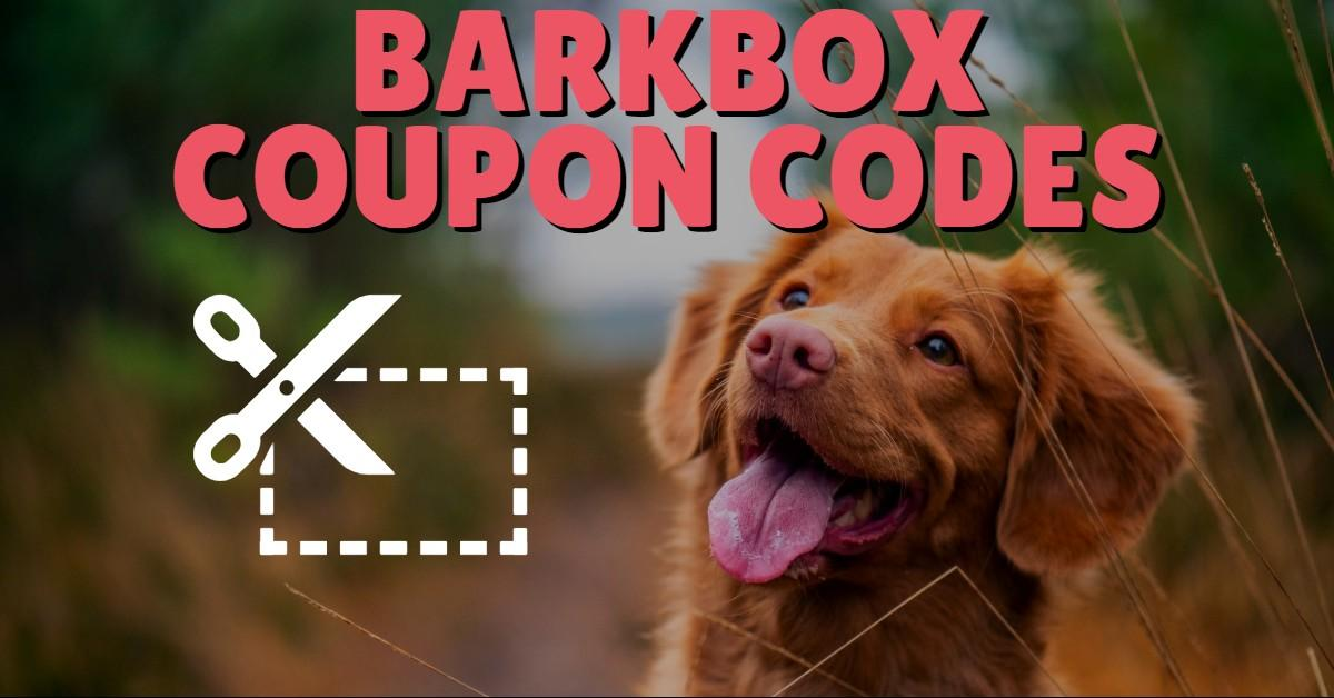 'BarkBox Coupon Codes' text above smiling dog and coupon icon