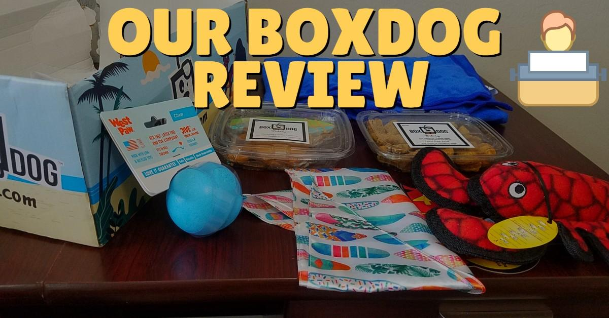 BoxDog Review and Unboxing