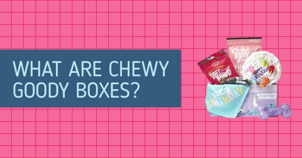 What Are Chewy Goody Boxes?