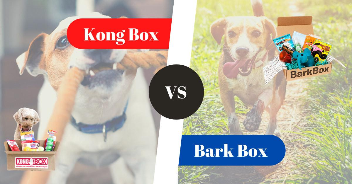 Kong Box vs BarkBox