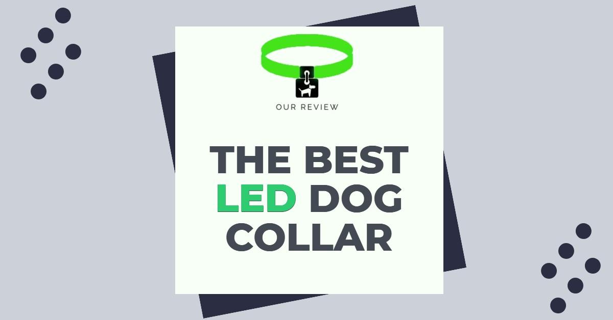 """Dog collar above the word """"The Best LED Dog Collar"""""""