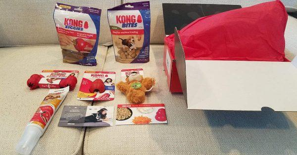 KONG Box Unboxing and Review 2020