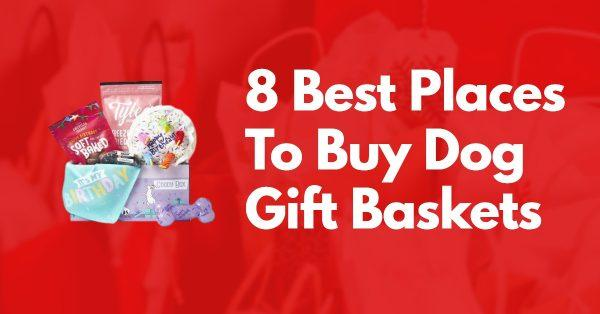 8 Best Places To Buy Dog Gift Baskets