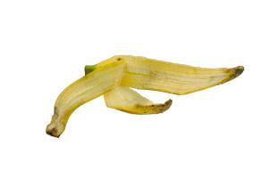 can dogs eat banana peels
