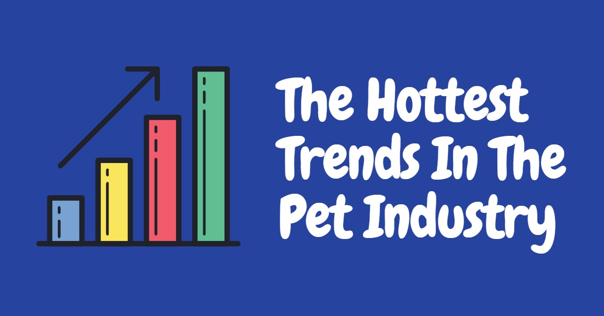 Hottest Trends in the Pet Industry
