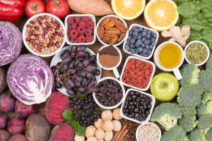antioxidants dog supplement