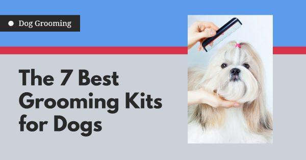 The 7 Best Grooming Kits for Dogs