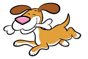 chondroitin dog supplement