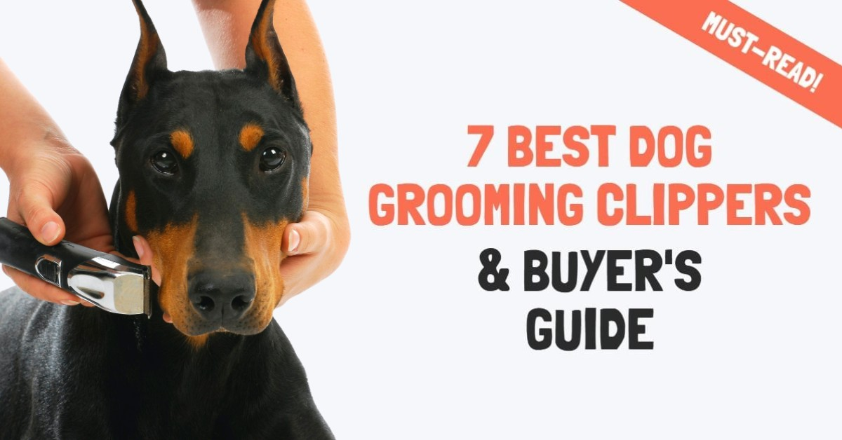 Best dog grooming clipers