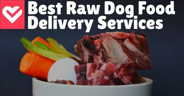 5 Best Raw Dog Food Delivery Services
