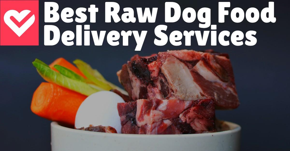 Bowl of food next to words 'Best Raw Dog Food Delivery Service'