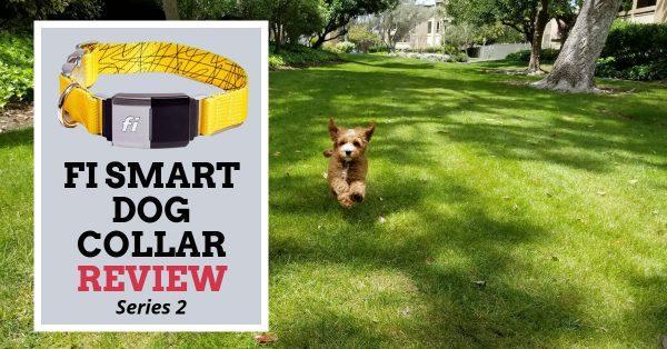 Fi Smart Dog Collar Series 2 Review
