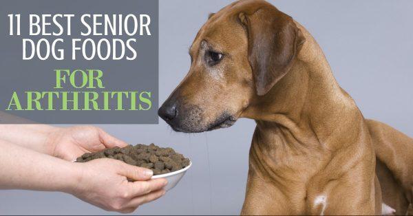11 Best Senior Dog Foods For Arthritis