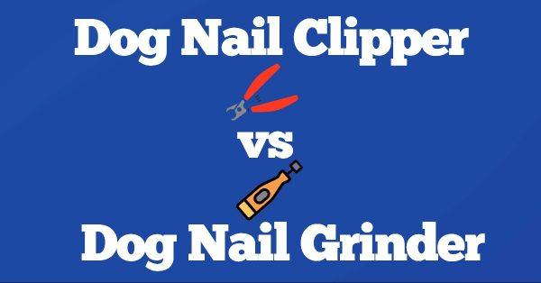 Dog Nail Clipper vs Grinder: Which is Better?