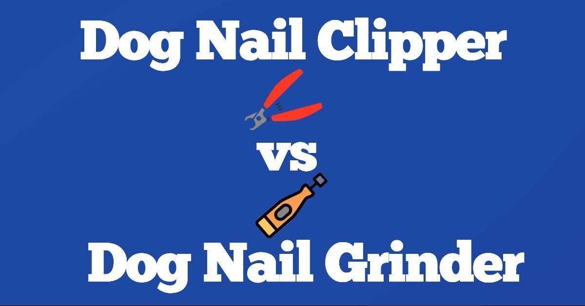 Dog Nail Clipper vs Grinder