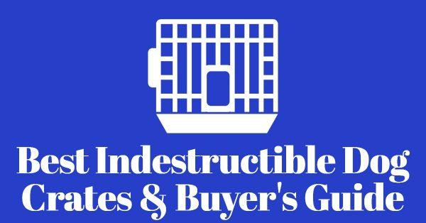 7 Best Indestructible Dog Crates and Buyer's Guide