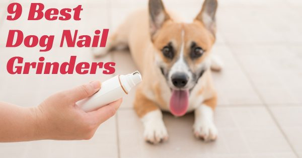 9 Best Dog Nail Grinders: Kiss Your Groomer Goodbye