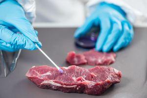 meat lab testing