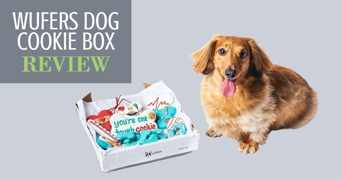 Wufer Dog Cookie Box Review