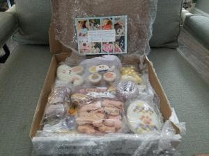 Wufers Easter Cookie Box