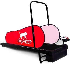 dogPACER Side View Slanted