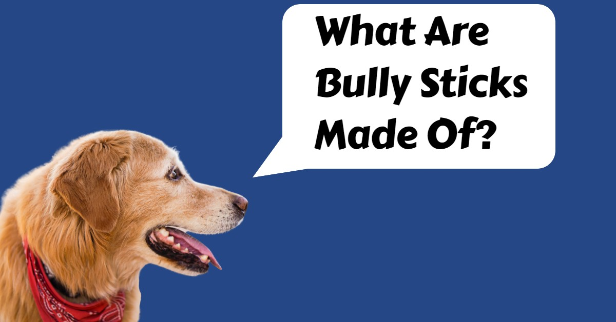 what are bully sticks made of