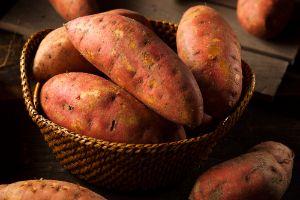 Sweet Potato for CBD Dog Treats