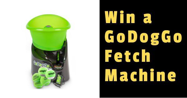 Win a GoDogGo Fetch Machine