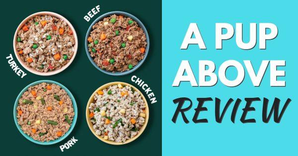 A Pup Above Review: Fresh Food For Dogs