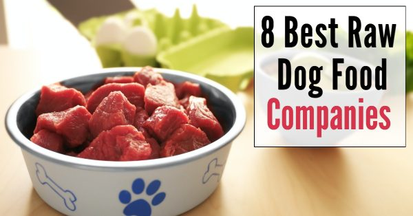 7 Best Raw Dog Food Companies