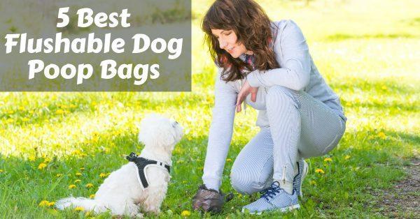 5 Best Flushable Dog Poop Bags: No More Extra Trash!