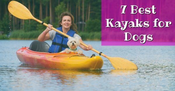 7 Best Kayaks for Dogs: Everything You Need To Know
