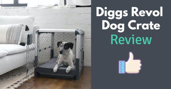 Diggs Revol Dog Crate Review: Read This Before Buying